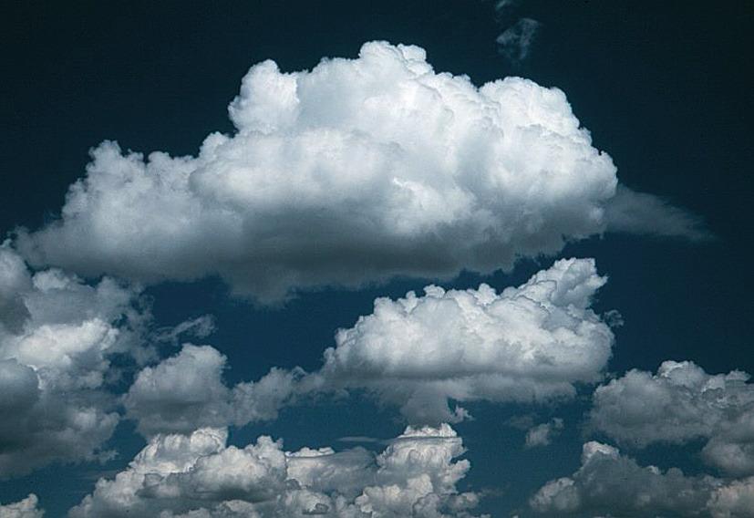 debesis su nez perspėjimo prekybos sistema)